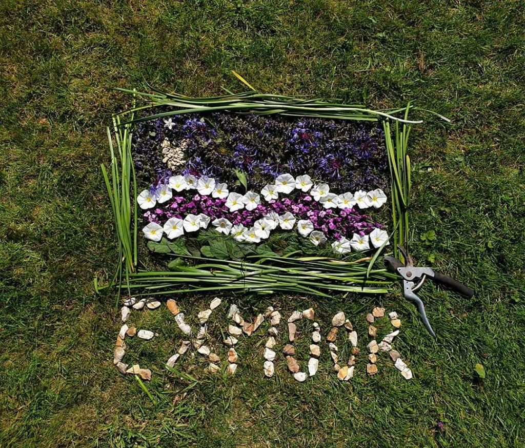 Exmoor Flag flower creation